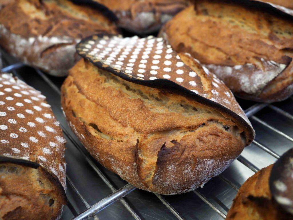 Pans de la master class 'Els Pans de la Ceres Hispànica'
