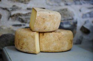 formatge lactosa